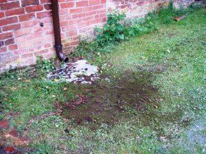 verschwendetes Regenwasser