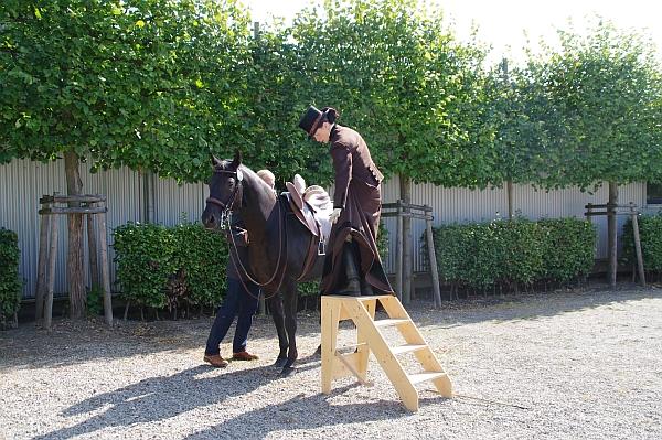 Korrektes und pferdegerechtes Aufsteigen in den Damensattel