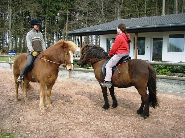 Plauderstunde zu Pferde – wie wohnt denn dein Pferd?