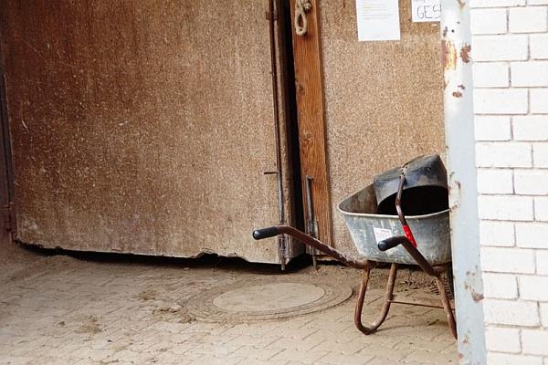 Alltägliche Gefahren: die Griffe der Schubkarre ragen in den Eingangsbereich der Reithalle. Außerdem muss das Pferd über einen Gullydeckel treten: manchen Tieren macht das Angst, so dass sie erst recht mit den Beinen gegen das Hindernis stoßen können