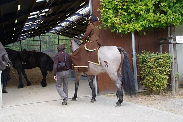Unfallverhütung: Breite Durchgänge, Schiebetüren, Aufmerksamkeit und ordentlich erzogene Pferde