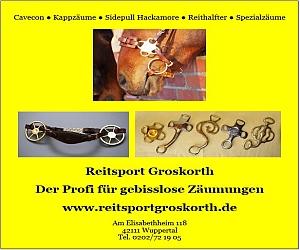 reitsprot-groskorth-banner.jpg