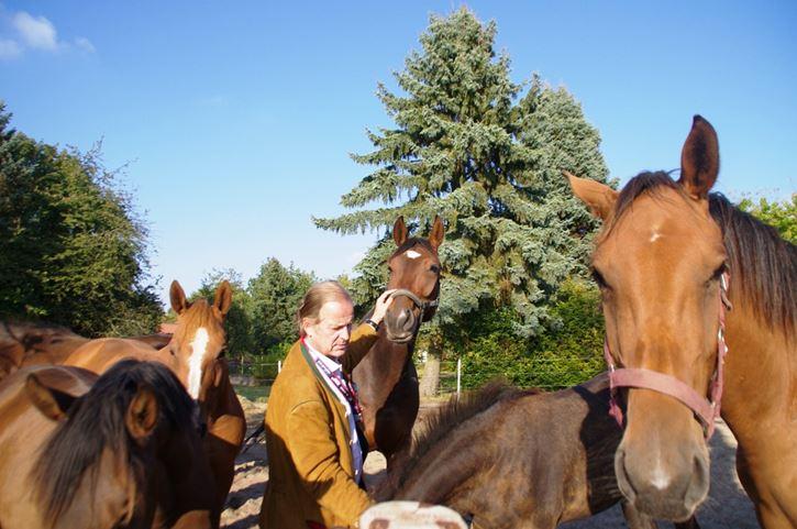 Gastgeber Baron Enno von Ruffin wird von den Holsteiner Stuten samt Nachwuchs freudig begrüßt