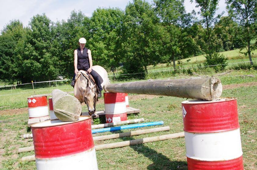 Konzentration und Gleichgewicht: so verstehen sich Pferd und Reiter
