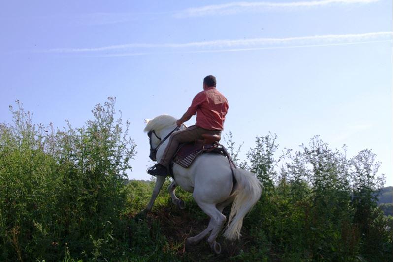 Mit voller Kraft nach oben Ob flacher oder steiler Aufstieg entscheidet der Reiter