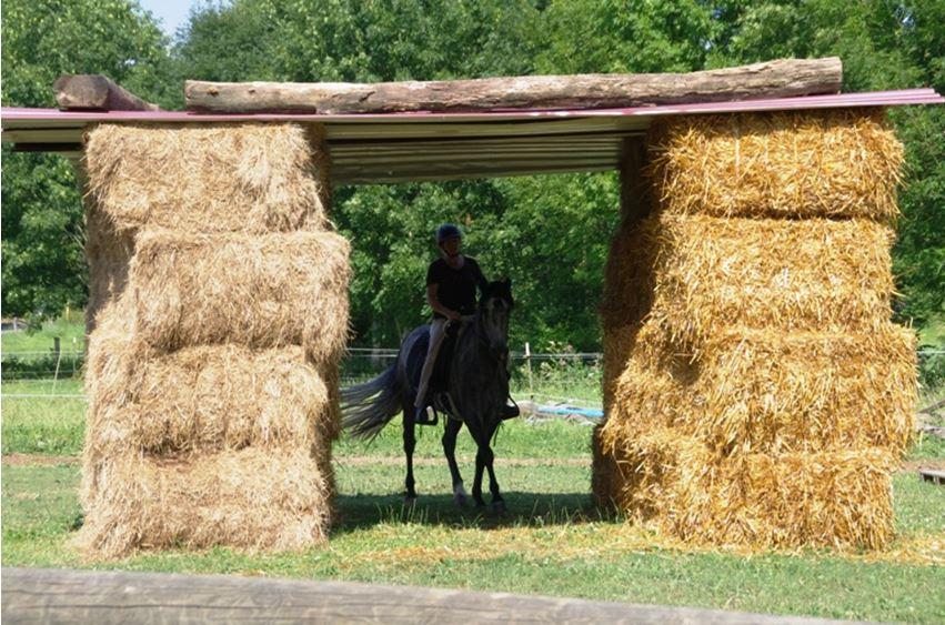 Der Tunnel kann Pferde irritieren, sorgsam geübt ist er kein Problem mehr