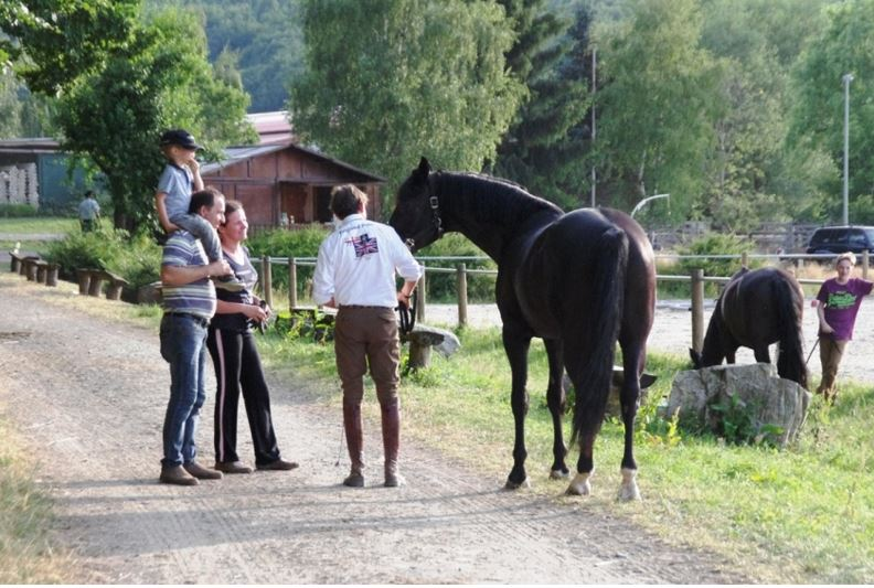 An allem interessiert und immer händelbar, so wünschen Reiter sich ihr Pferd, auch die meisten Spitzenreitsportler