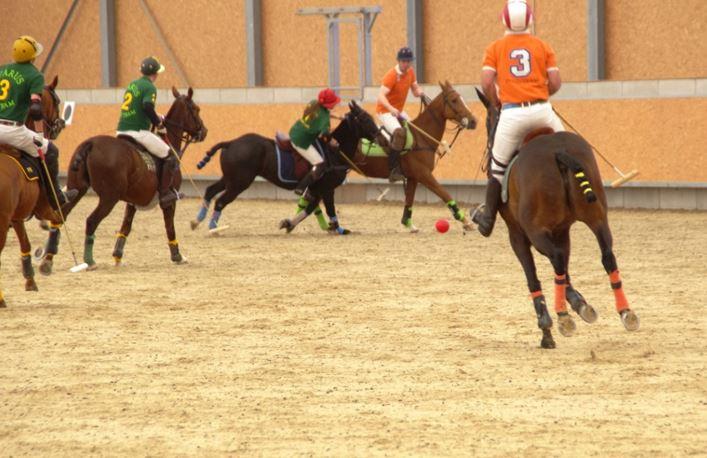 Neuer Trend: Polo auf gut geschulten reaktionsschnellen Pferden