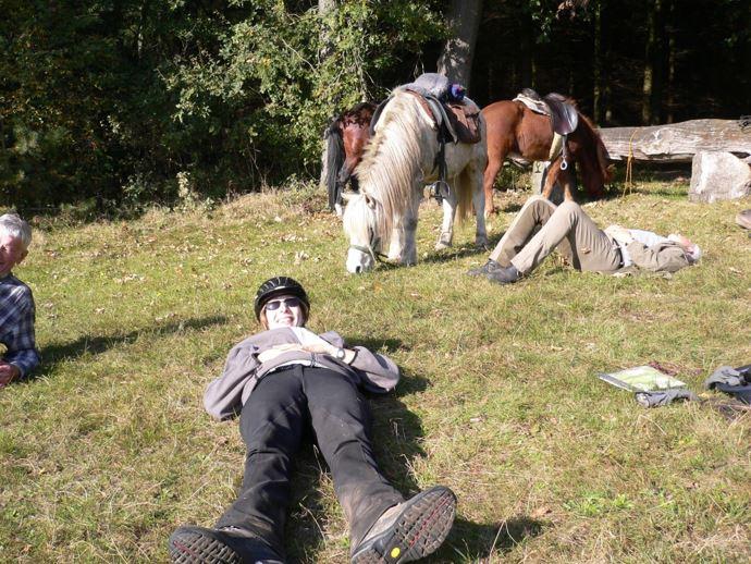 Ob Wettbewerb oder Liebhaberei: Die Equitana Open Air in Neuss lockt alle Pferdefreunde