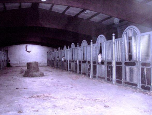 pferdeseite-tv-historischer-pferdestall