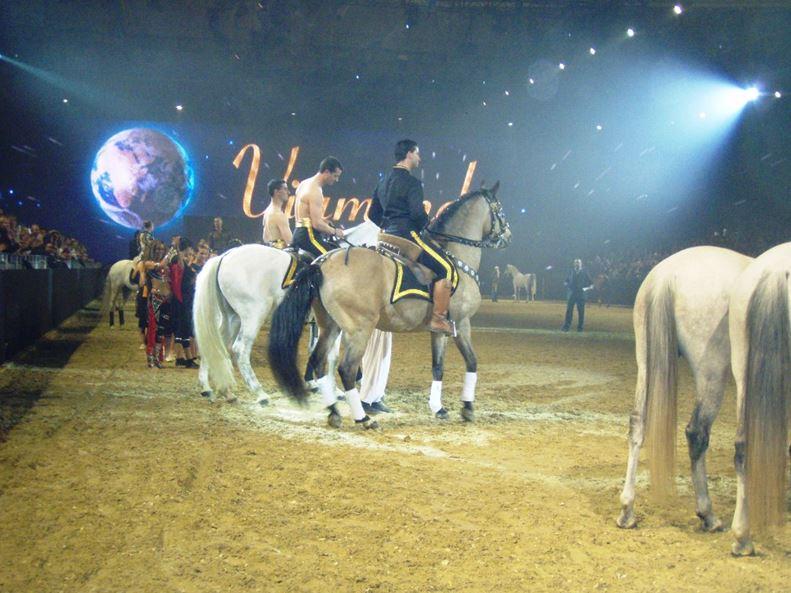 Pferdeflüsterer und Showmaker…