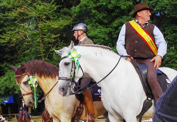 Den Titel Deutscher Meister Working Equitation Master Class Rinderarbeit holte Roland Heiss auf Zidane. Foto: Tanja Mundt-Kempen