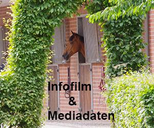banner_infofilm_mediadaten_300_250.jpg