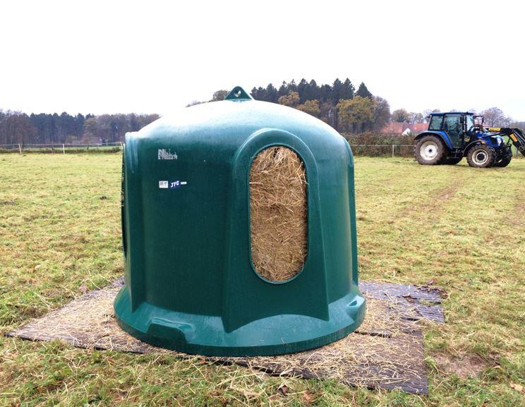 Neue Ideen zur Fütterung, innovative Produkte für den Pferdebetrieb? Vorstellung zum Innovationspreis auf der Equitana empfohlen!