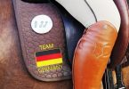 pferdeseite_tv_working_equitation_national_und_international_betrachtet_championate_der_schoenen_bilder_01