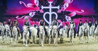 """Aus der Camargue kommt die Amateurreitergruppe """"La Montagnette"""" mit ihrer beeindruckenden Camargue-Quadrille – 39 Camargue-Pferde bilden dieses imposante Schaubild. Foto: Messe Essen/Rainer Schimm"""
