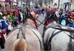 pferdeseite_tv_karneval_der_pferde
