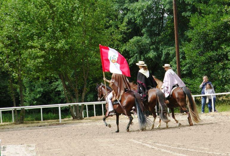 Botschafter aus fernen Ländern bringen Farbe in die Pferdelandschaft