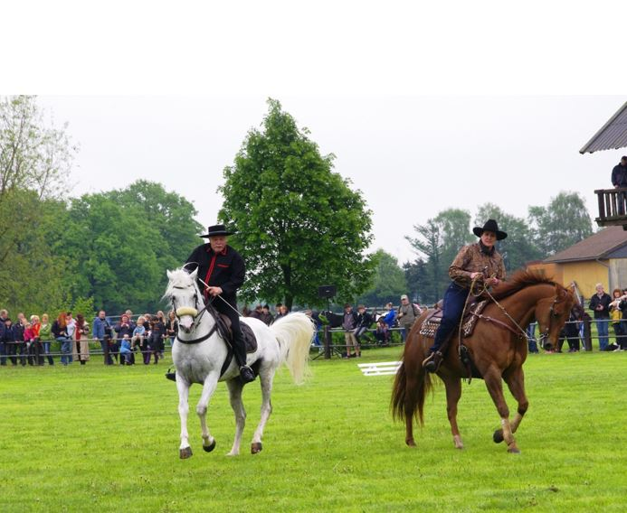 pferdeseite_tv_horsemanship_02
