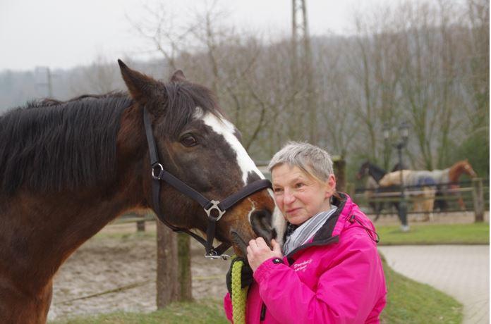 pferdeseite_tv_horsemanship_03
